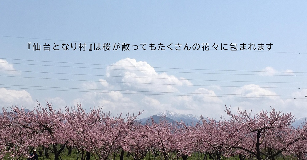 仙台となり村